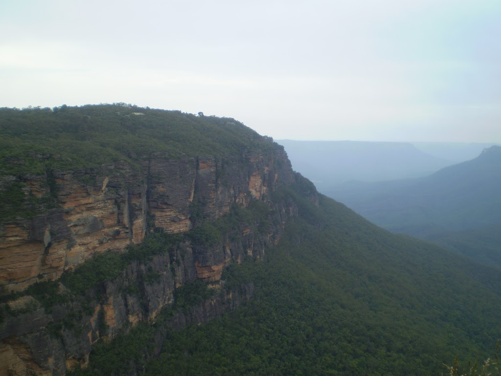 The view from Gordon Falls Lookout (10082)