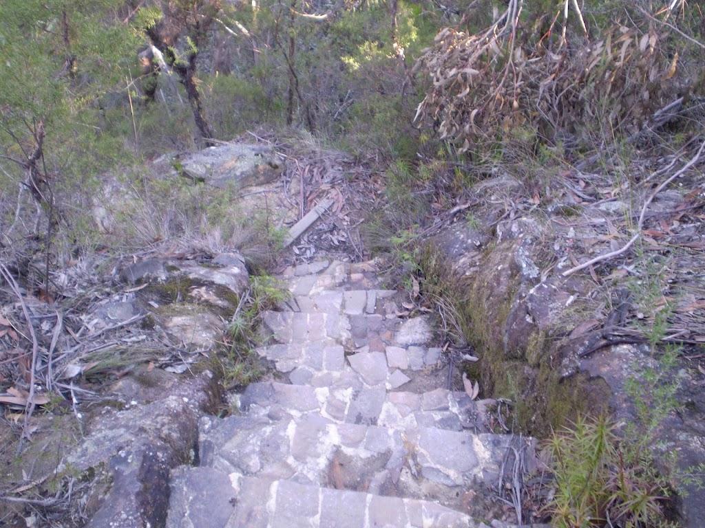 Rock steps to Lillian's Glen