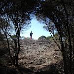 Walker at Kianiny lookout (102322)