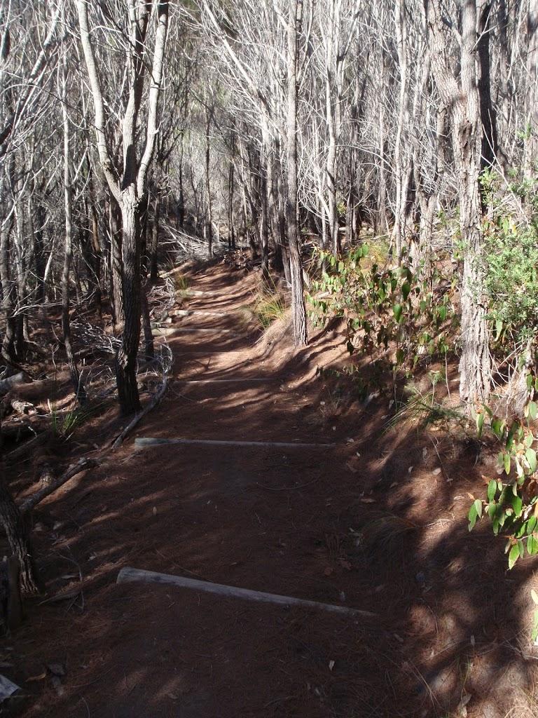 Track towards White Horse Bay from Kianiny Bay