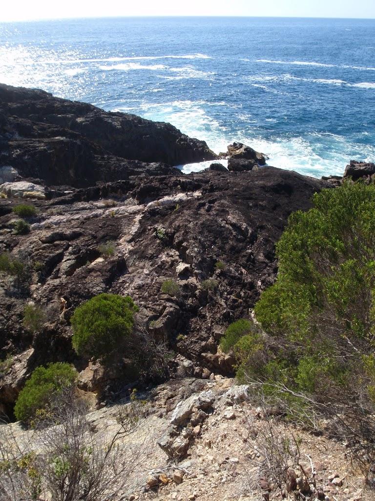 White Horse Bay coastine