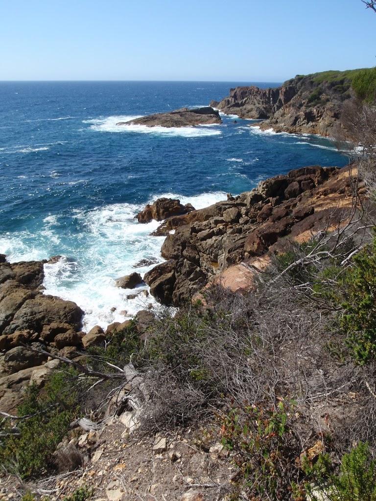 Rocky coastline below Kangarutha Track
