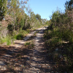 Track up to the summit and Bournda Trig