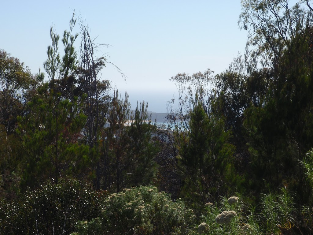 View from Bournda Trig