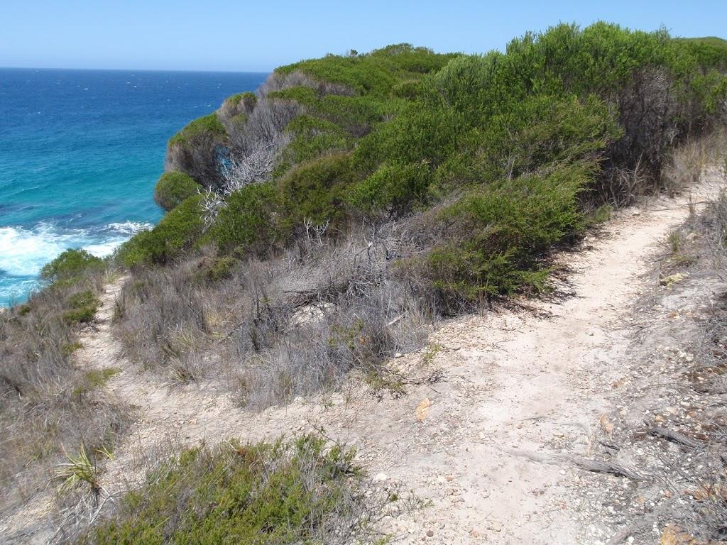 Track to coast, off Kangarutha Track