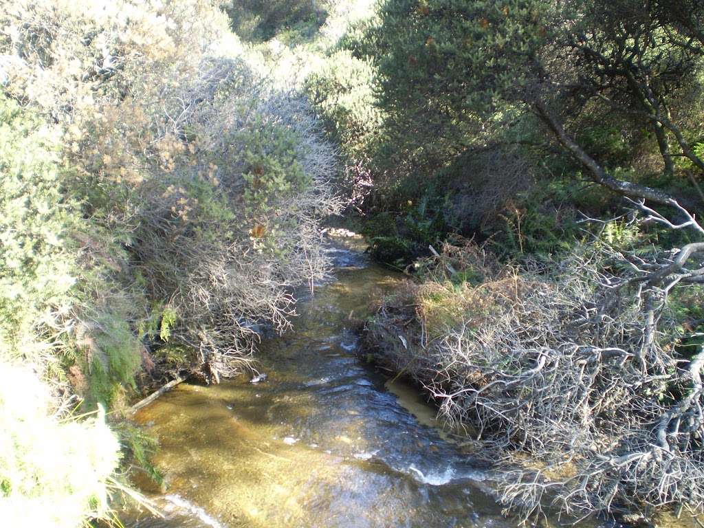 Crossing Jamison Creek (10430)