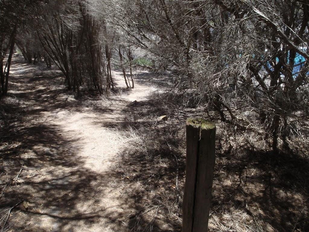 Post marker on Kangarutha Track