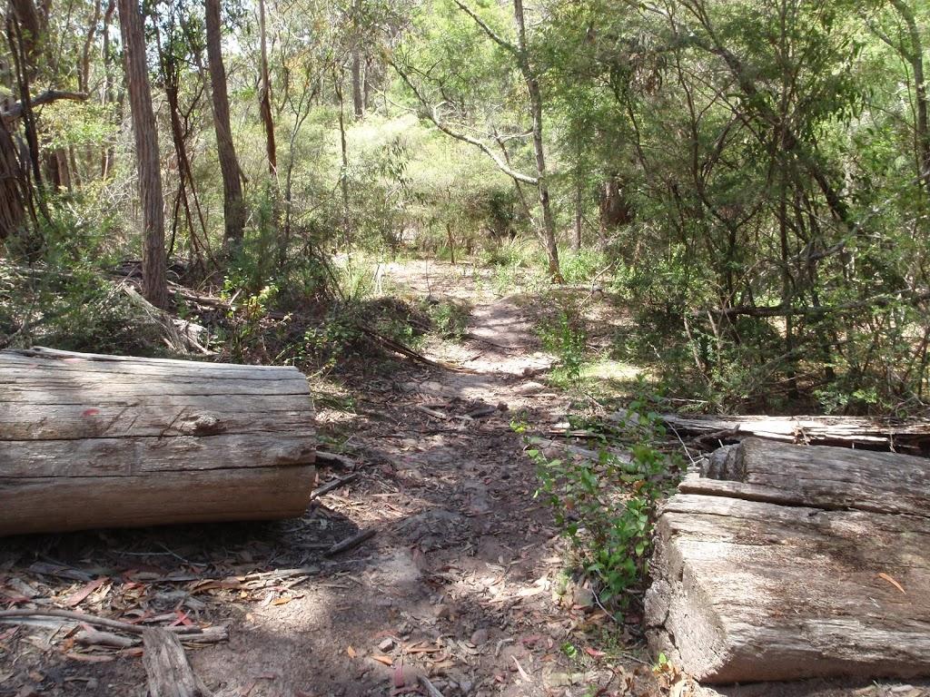 Track through cut log