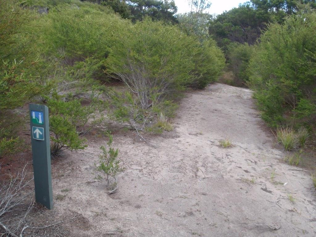 Arrow marker through the heath