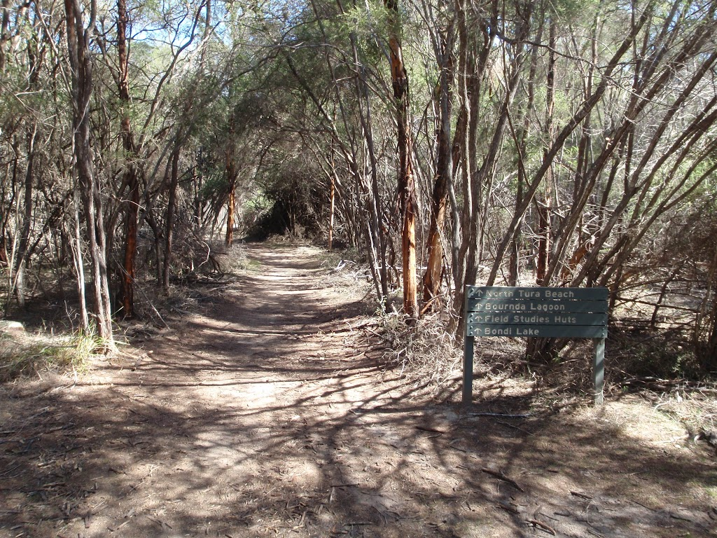 The track looking away from Hobart Beach camping area