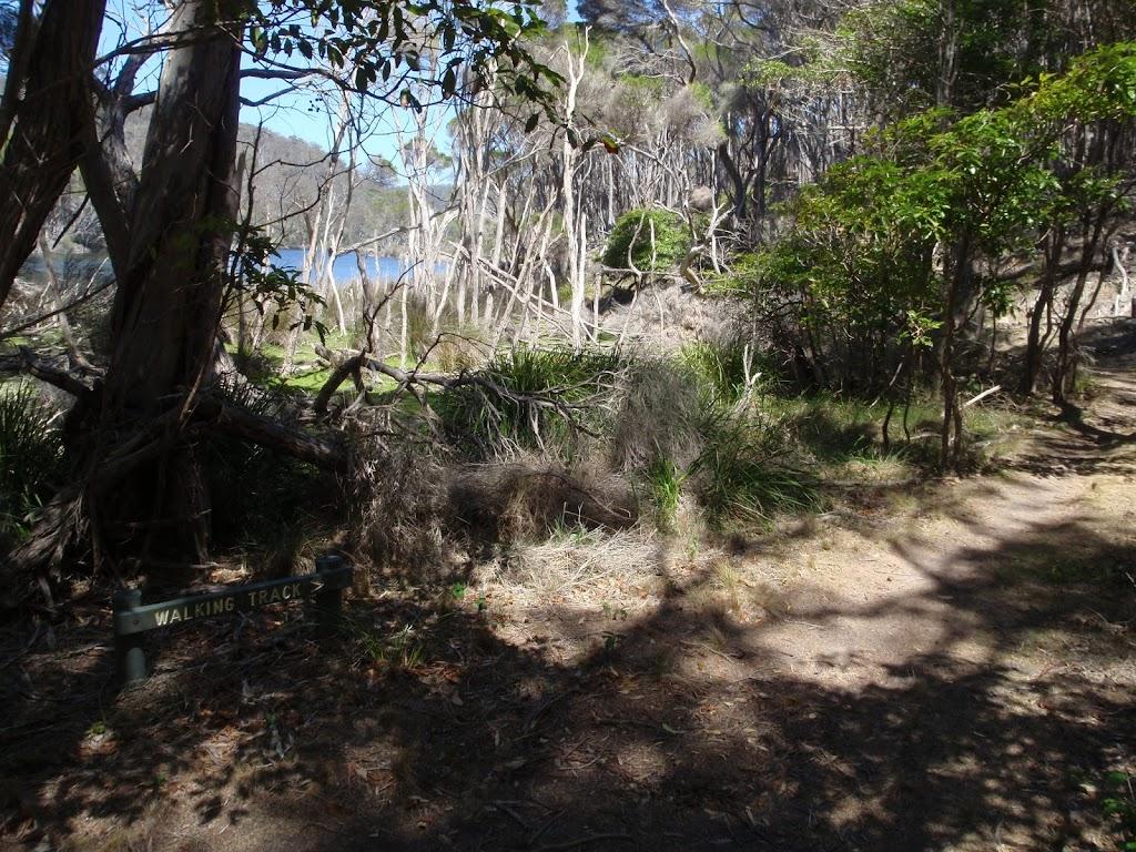Track along Bournda Lagoon