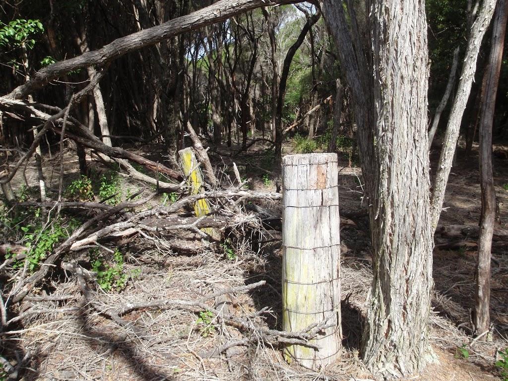 Old farm fencing