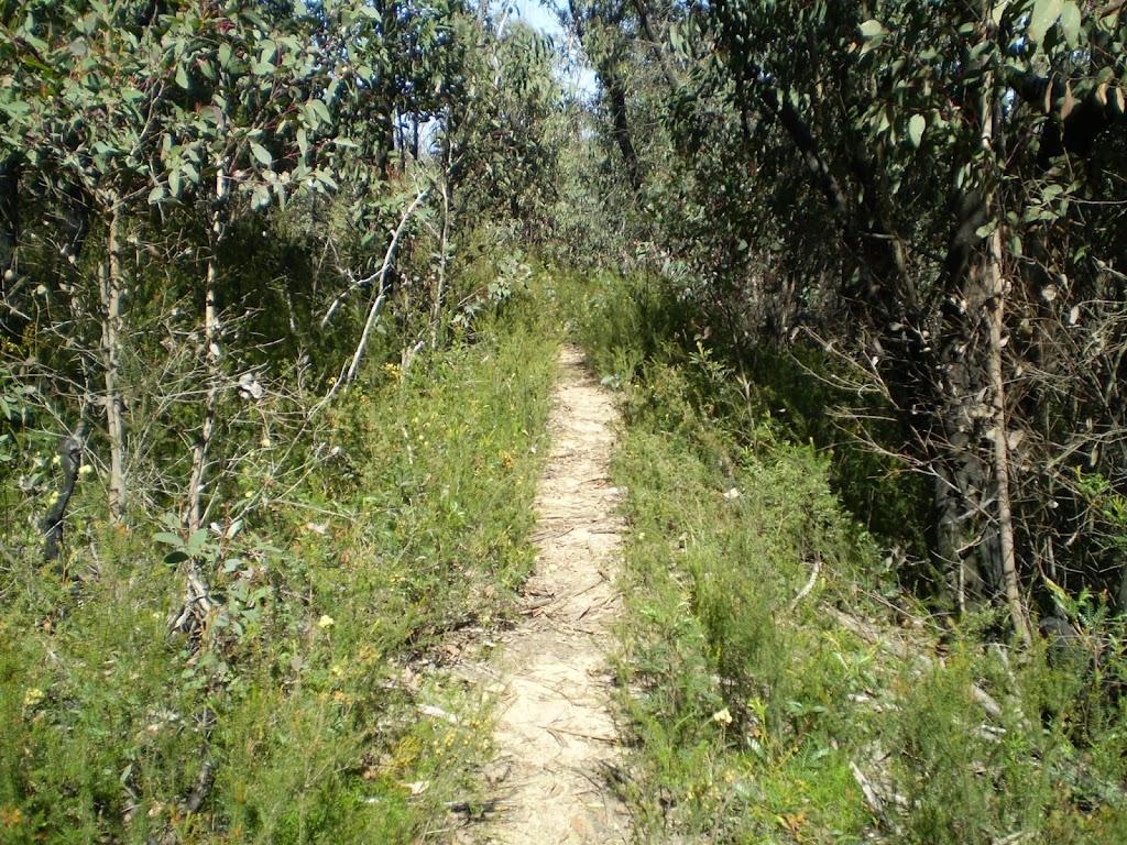 The Glen Rosa Track