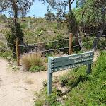 Bournda Island track (106522)