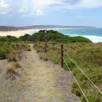 Track down to Bournda Beach (106573)