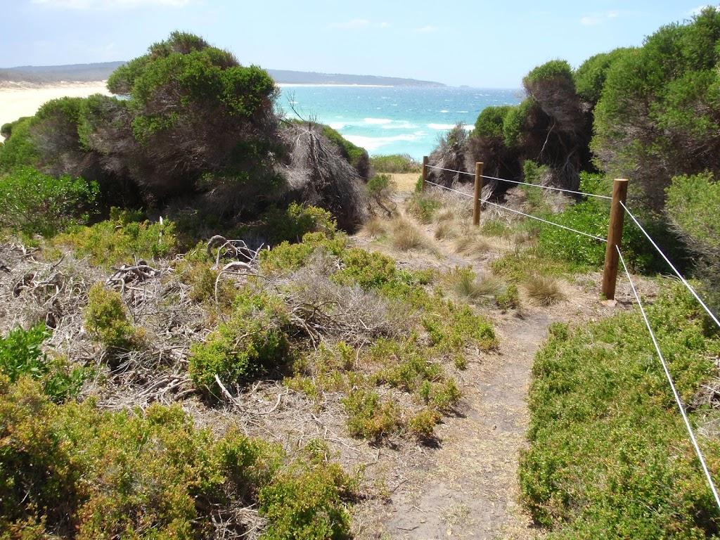 Track south of Bournda Beach