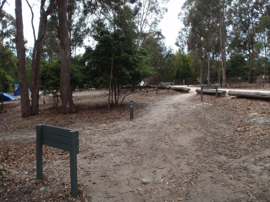 Track next to Bittangabee car park