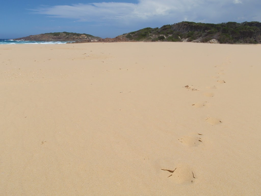 Bournda Beach