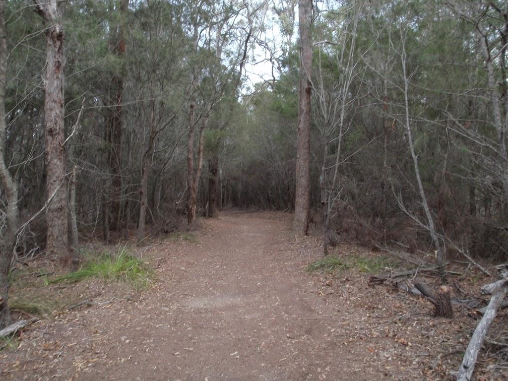Track parallel to Bondi Lake