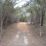 Track to Bournda Lagoon (106822)