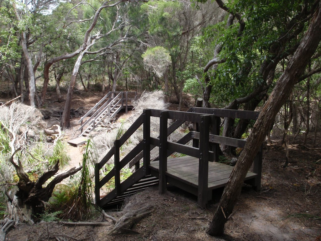Stairs through gully south of Bittangabee Bay (106825)