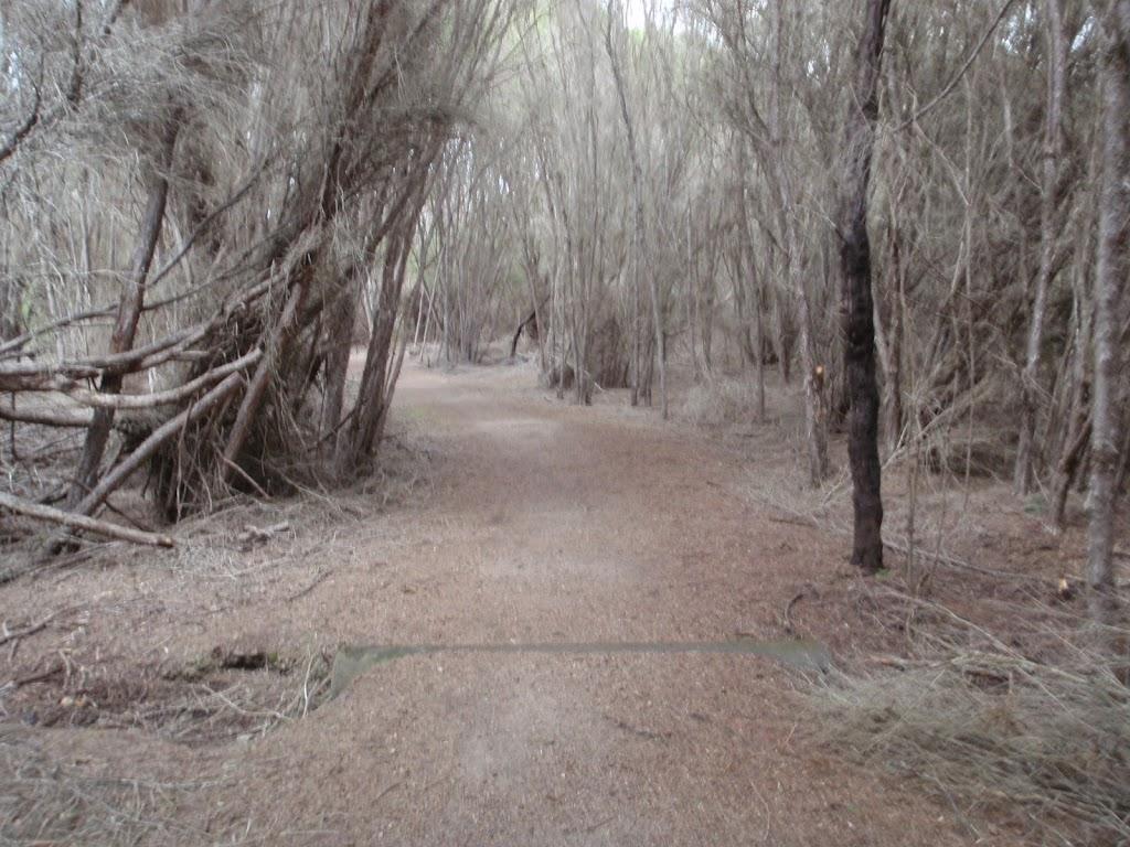 Track to Bournda Lagoon