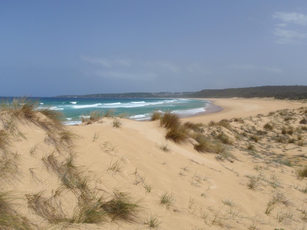 North Tura Beach from dunes (107050)