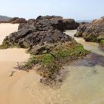 Rocks below Bournda Island (107128)