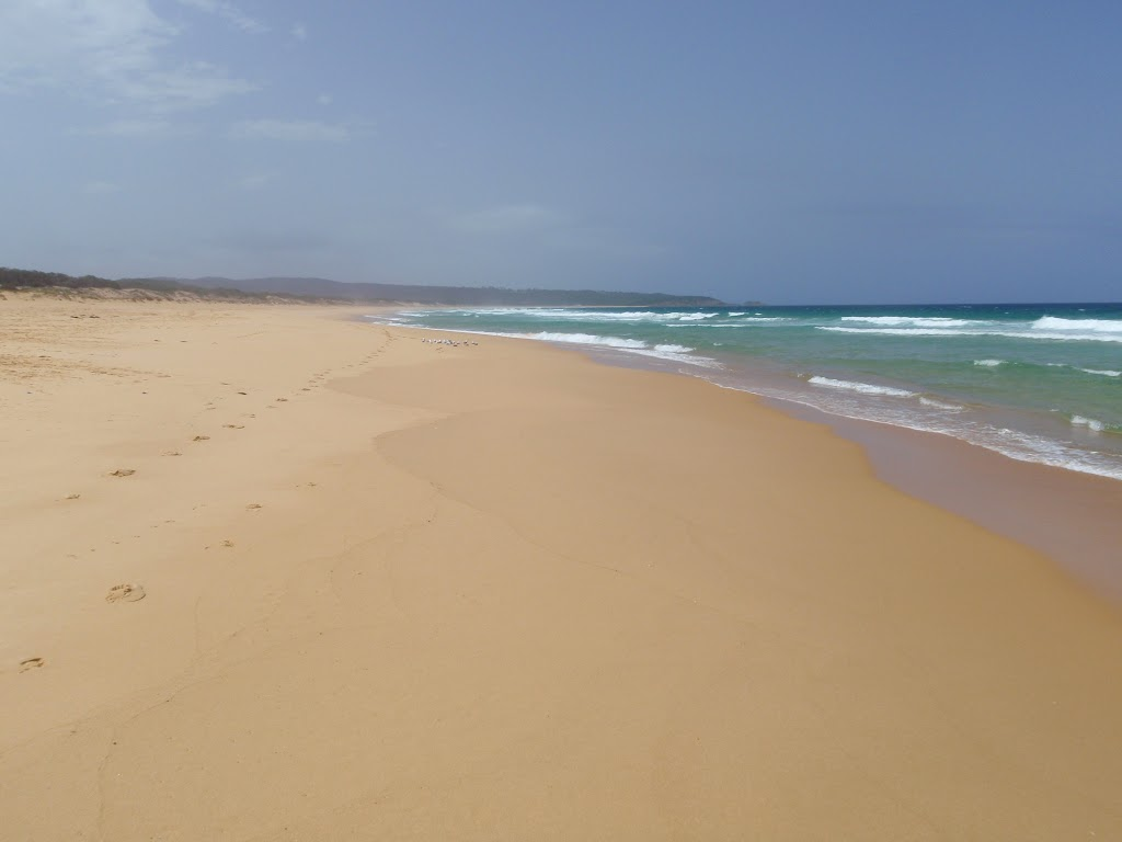 Bournda Beach (107158)
