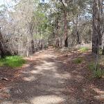 Track below road (107254)