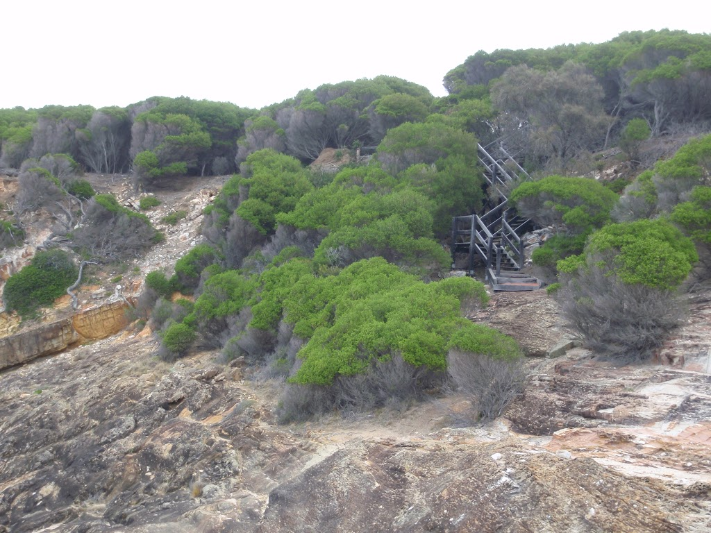 Stairs through heath to Pulpit Rock car park