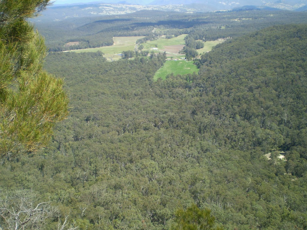 The Megalong