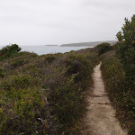 Track along the hillside