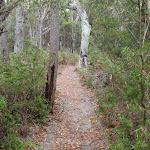 Track between lookouts (107860)