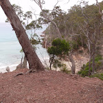 Track behind Barmouth Beach