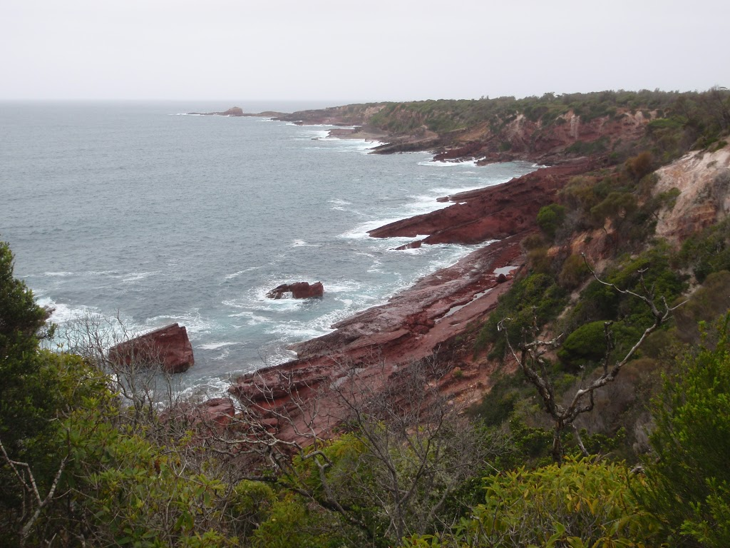 View along the coast towards Haycock Point
