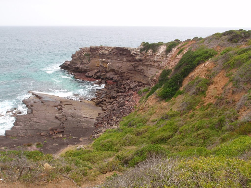View from track to Haycock Point (108325)