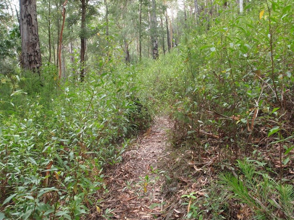 Track to Palona Cave