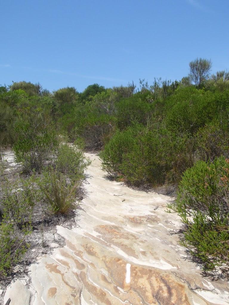 White sandy track