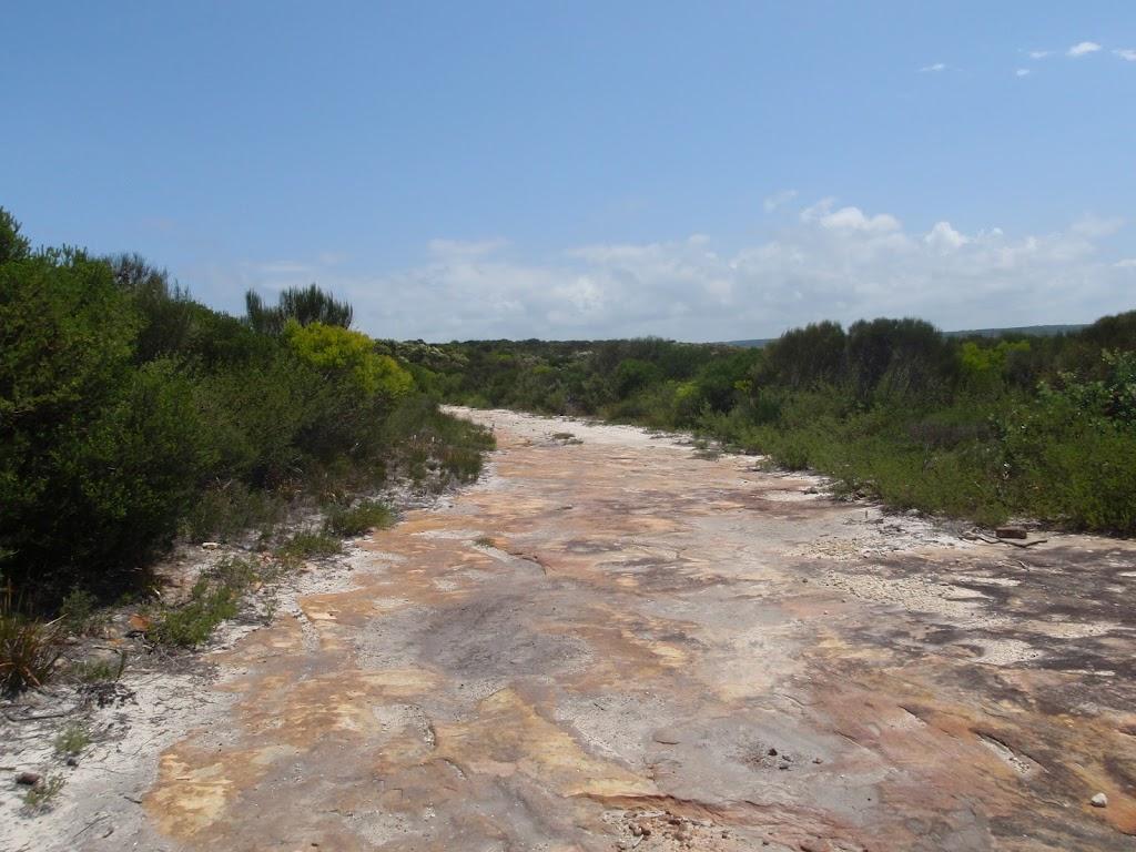 Rocky service trail (112972)