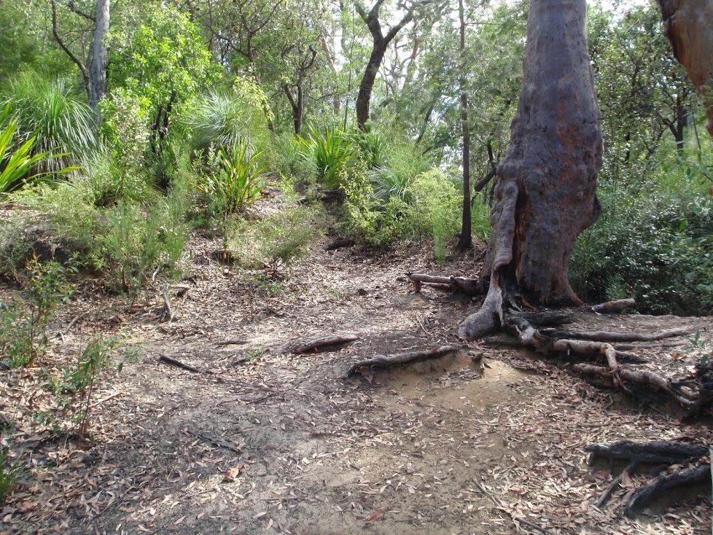 Bottom of Lake Eckersley Track