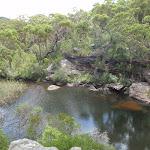 Kingfisher pools