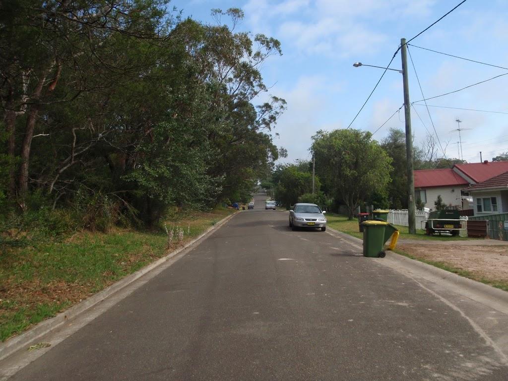 Following Warabin Road