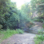 Crossing the creek (115909)
