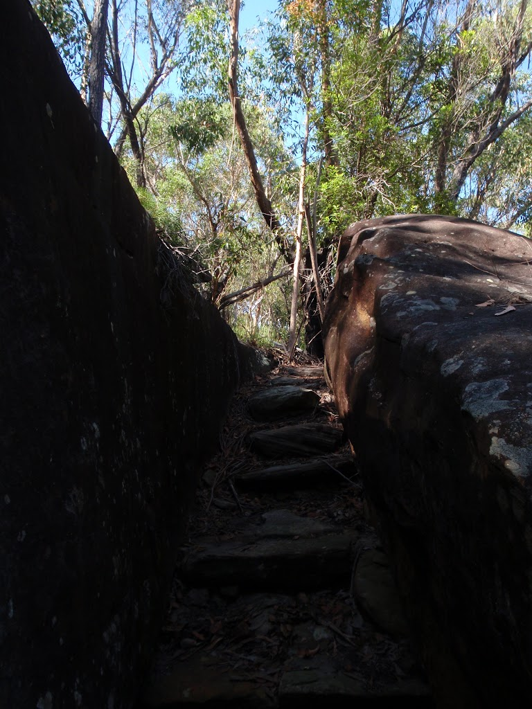 Rock steps (116254)