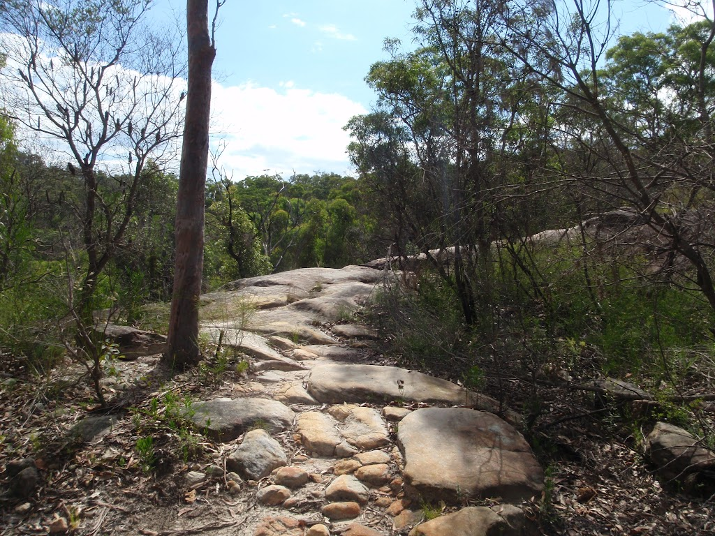 Rocky section of the Mt Kuring-gai Track
