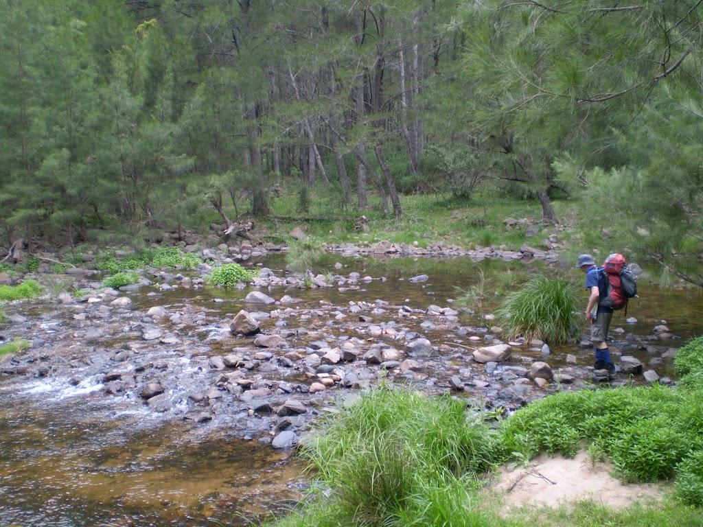 Cox's River (11660)