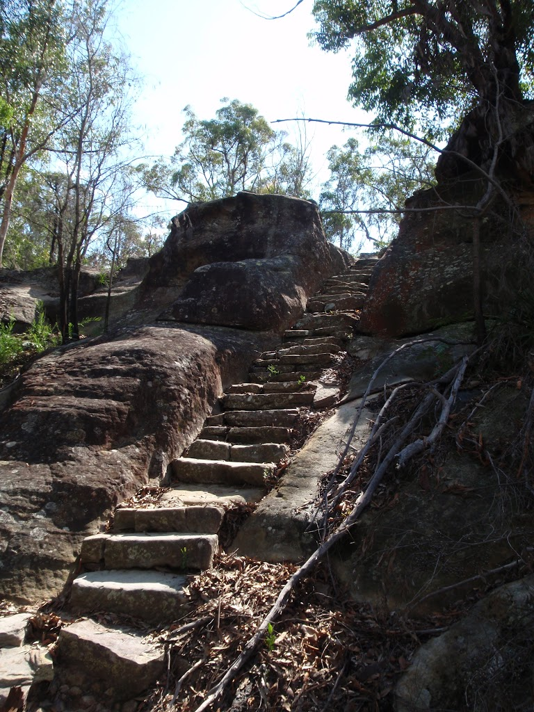 Rock steps north of the lookout track (116689)