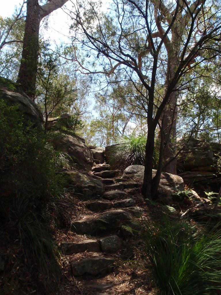 Rock steps down Birrawana Track (116794)