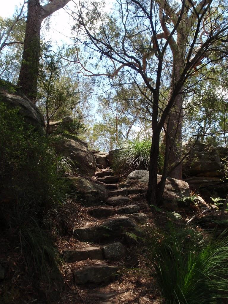 Rock steps down Birrawana Track